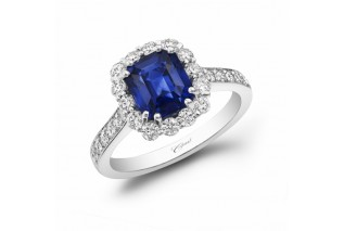 Coast Diamond Sapphire Halo Engagement Ring - Mervis Diamond Importers