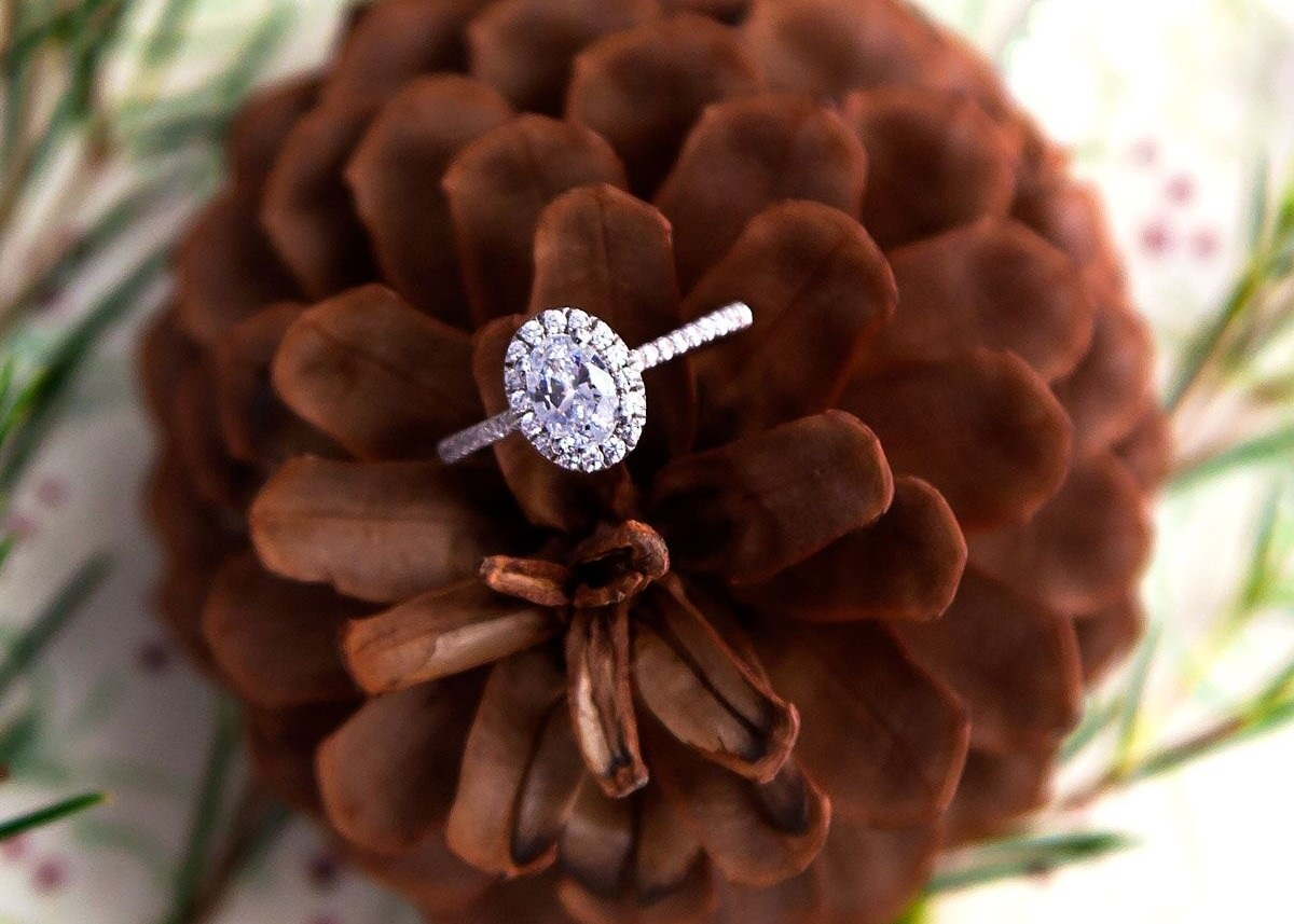 Your Holiday Proposal with a Coast Charisma Collection Engagement Ring & Diamonds Direct, Raleigh, NC